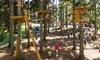Parco Avventura Selvino - Selvino: Parco Avventura Selvino: uno o 2 ingressi per adulti e bambini (sconto 32%)