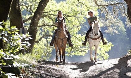 Randonnée à cheval d'1h ou 2 ou cours d'équitation d'1h pour 1 ou 2 personnes dès 21,90 € au Haras du Bois Marie