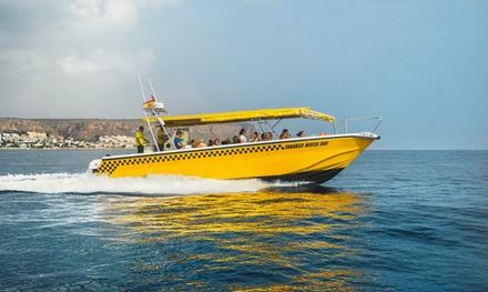Viaje de ida y vuelta entre Santa Pola y la isla de Tabarca para 1 con Tabarca Water Taxi (33% de descuento)
