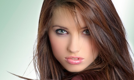 Haircut with Optional Conditioning or Color or Brazilian Blowout (Up to 61% Off)