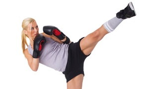 Ballistic Martial Arts and Fitness: $25 for Five Zumba or Cardio-Kickboxing Classes at Ballistic Martial Arts and Fitness ($50 Value)
