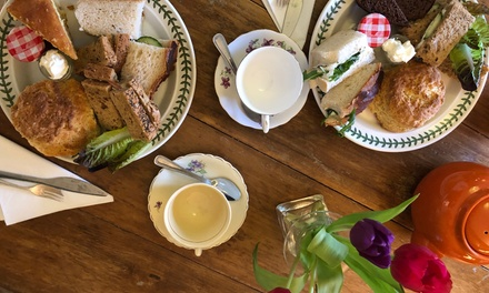 Afternoon Tea with Garden Entry for Two or Four at King Johns Nursery