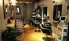 Nest Salon - Downtown Boston: Haircut Packages at Nest Salon (Up to 46% Off). Three Options Available.