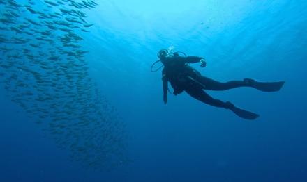 Bautismo de buceo en mar abierto para 1 o 2 personas desde 29,95 € en Revolution Dive Altea