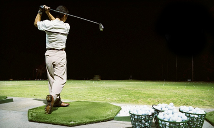 Markham Golf Dome - Markham: Golf Lessons and Practice at Markham Golf Dome (Up to 66% Off). Three Options Available.