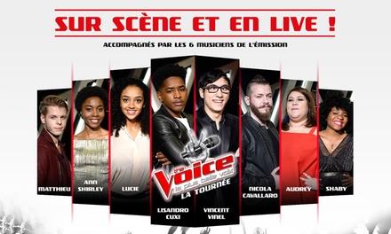 1 place pour la tournée The Voice, catégorie au choix, le 6 juillet 2017 à 20h, dès 12,50 € au Zénith de Strasbourg