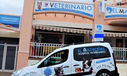 1, 2 o 3 vacunas con chequeo para perro o gato en Centro Veterinario El Madroñal (hasta 61% de descuento)