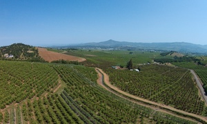 Southern Oregon Drone: 60-Minute Outdoor Photo Shoot with Retouched Digital Images from Southern Oregon Drone (70% Off)