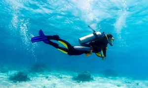 Plongée Capitale: PADI Open Water Level 1 Diver Course for One or Two with Plongée Capitale (Up to 55% Off)