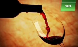 יקבי גוש עציון: יקבי גוש עציון בין נופי הרים: רק 18 ₪ לזוג או 35 ₪ לרביעייה לסיור+ טעימות יין! אופציה לטעימות vip הכוללות גבינות מובחרות