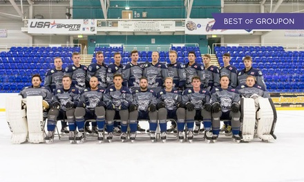 Sheffield Steeldogs