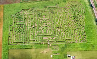 Entry for Two or Four or a Season Ticket for One to Thornton Abbey Maize Maze (Up to 35% Off*)