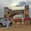 Desert Safari with Barbecue