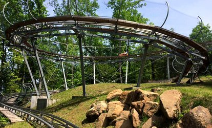 image for $20.50 for an Alpine Coaster Ride for up to Two at Smoky Mountain Alpine Coaster ($30 Value)