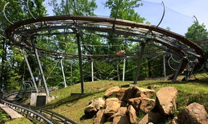 $19 for an Alpine Coaster Ride for up to Two at Smoky Mountain Alpine Coaster ($30 Value)