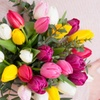 Bouquet de tulipes, option boite de chocolat