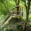 Flevoland: unieke boomhut-overnachting