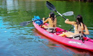 The Watercraft Connection: Two-Hour Kayak Rental for One, Two, or Four at The Watercraft Connection (Up to 44% Off)