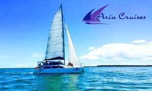 Aria Cruises: Moreton Bay Cruise and Lunch for One Child ($39), Adult ($49) or 20 People ($899) with Aria Cruises (Up to $2,200 Value)