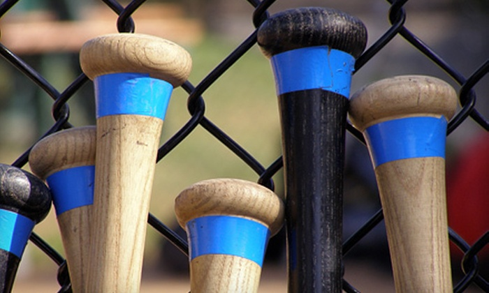 The Strike Zone  - Rose Hill: 30-Minute or 60-Minute Batting-Cage Rental or Batting Day for Up to 10 at The Strike Zone in Rose Hill (Up to 53% Off)
