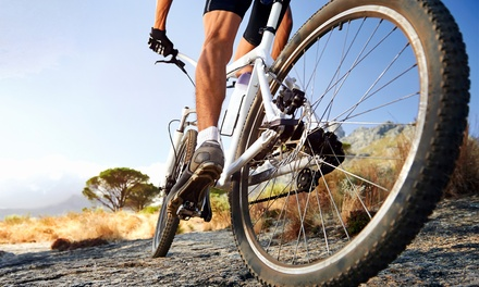 ErgoFIT Bike Set-Up for One Bike for R399 at Cycle Teknix (50% Off)