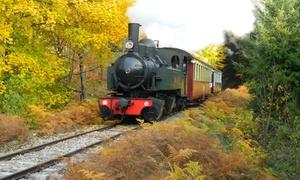 Velay Express: Un aller-retour en train à vapeur pour enfant ou adulte ou pour 2 adultes et 2 enfants dès 7,50 € à Velay Express
