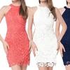 Leo Rosi Women's Melanie Bodycon Sleeveless Lace Dress
