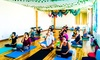 Up to 70% Off Classes at Yoga Remedy's Essential Wellness