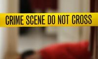 Cours de criminologie en e-learning avec Online Academies à 39 € (84 % de réduction)