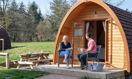 Forest of Dean: Up to 4Night Glamping Pod Stay for Four People at Whitemead Forest Park