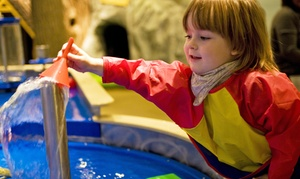 City Treehouse: One or Three Family Play Day Passes or One Soap-Making Party at City Treehouse (Up to 50% Off)