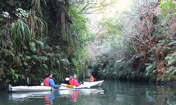 The Boat Shed Kayaks - Karapiro: Three-Hour Glow-Worm Kayak Trip for One Child ($40) or Adult ($59) with The Boat Shed Kayaks (Up to $110 Value)