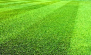 TITAN LAWN CARE: $20 for $40 Groupon — Titan Lawn Care
