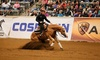 Kentucky Reining Cup - Alltech Arena at Kentucky Horse Park: Kentucky Reining Cup One-Day Passes at the Alltech Arena on Friday, April 25, or Saturday, April 26 (59% Off)