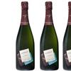 Bouteilles de Champagne Fredestel