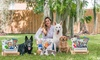 Pooch Perks: One-, Three-, or Six-Month Popular Pooch Subscription from Pooch Perks (34% Off)