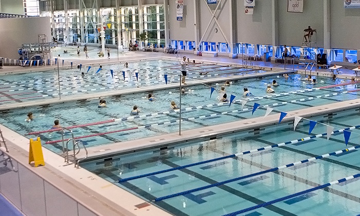 Freedom Aquatic & Fitness Center - Brentsville: One-Month Student or Adult Gym Membership at Freedom Aquatic & Fitness Center (Up to 47% Off)