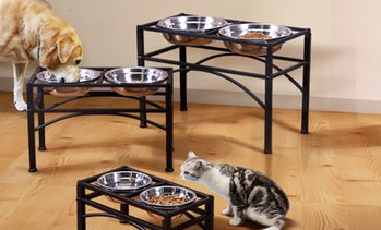 Stainless Steel Raised Pet Bowl