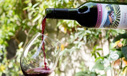 Vineyard Tour and Wine Tasting for One, Two or Four at Blackdown Ridge Estate
