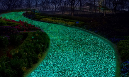 Up to 500 Glow-in-the-Dark Pebbles