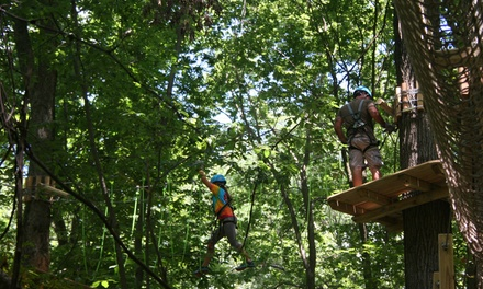 3-Hour Conquer the Canopy Adventure for One or Two at Edge Adventures (Up to 30% Off). Four Options Available.