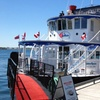 49% Off Christmas Dinner and Dance Cruise