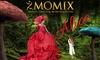Momix in Alice a Torino, marzo 2021
