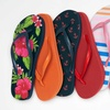 Sociology Women's Flip Flops (2-Pack)