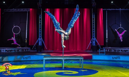 Garden Bros. Circus for Two Adults and Two Children (November 12–15)