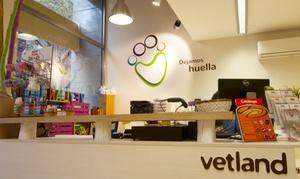 Vetland: Revisión para perros y gatos con vacunas anuales desde 19,95 € en cinco centros Vetland