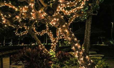 80% Off – Solar String Lights – Gloucestershire (£4 at Groupon)