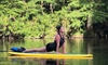 Up to 40% Off at Cypress SUP Yoga and Paddle Board