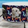 1 or 2 Personalized Pet Food Dishes from Mailpix