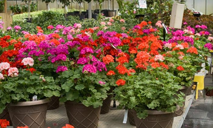 Upriver Greenhouse - Spokane: $15 for $30 Worth of Flowers and Plants at Upriver Greenhouse Florist and Nursery
